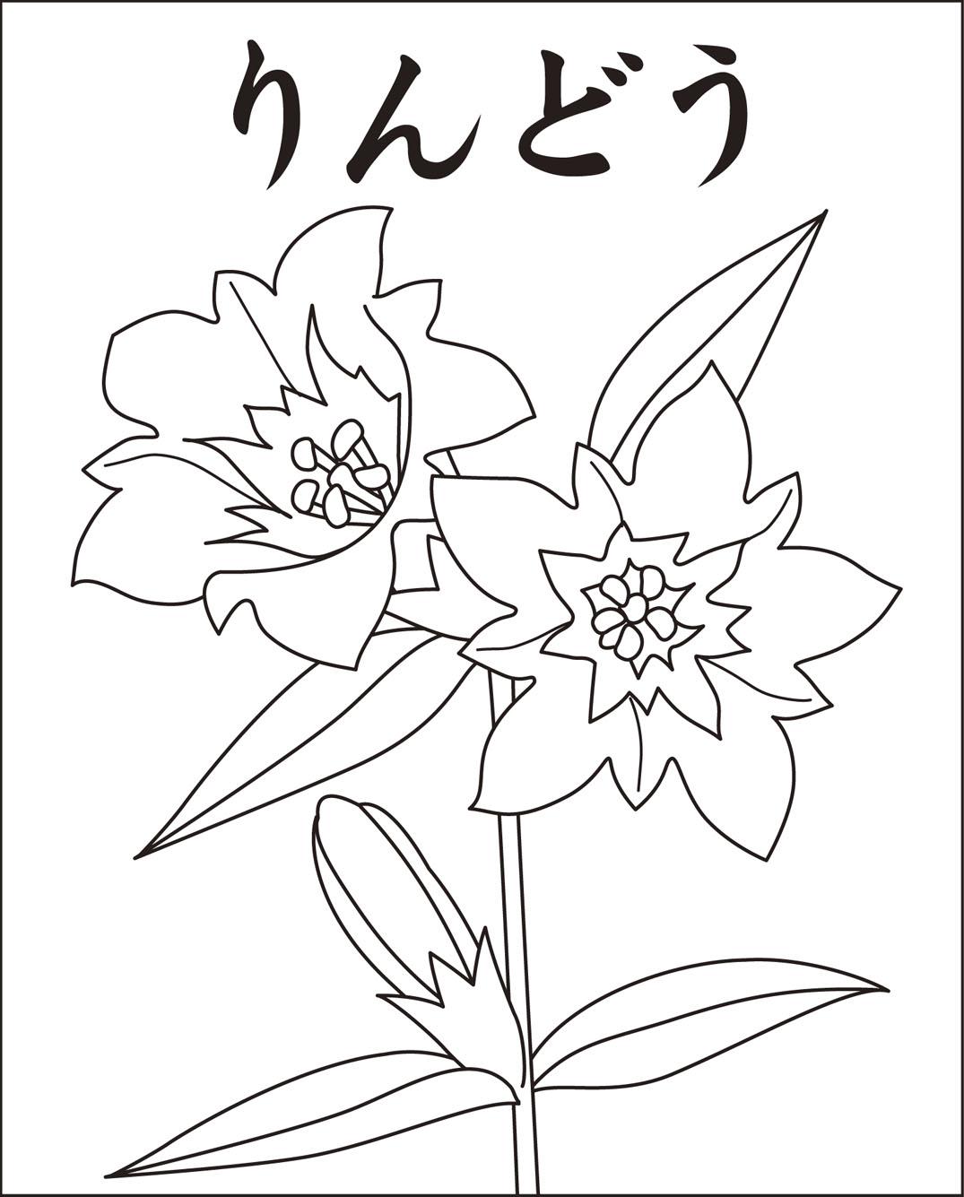 りんどう(花)