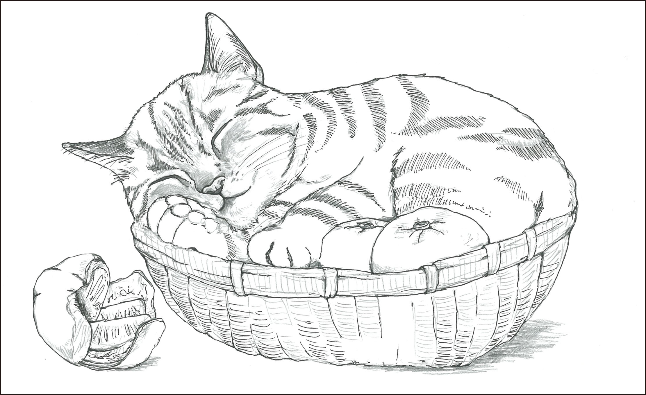 レク素材 猫とみかん介護レク広場レク素材やレクネタ企画書の