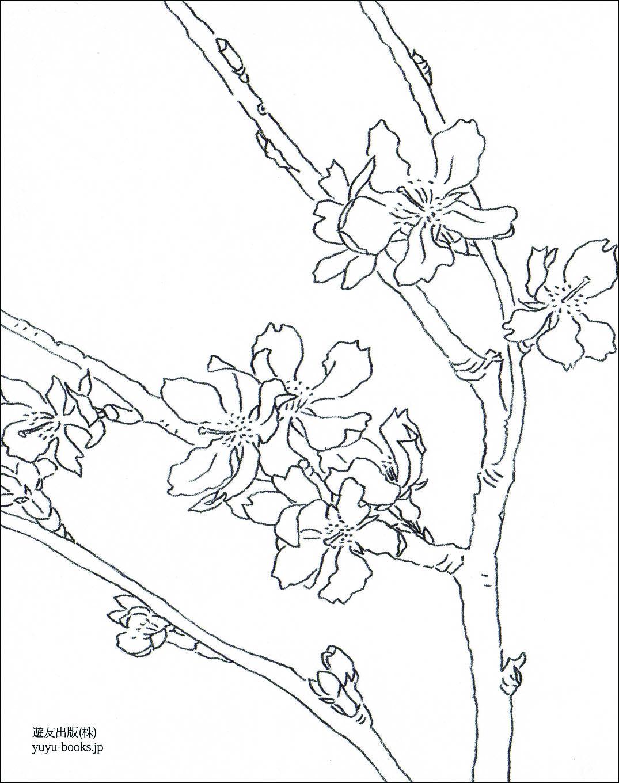レク素材 桜遊友出版介護レク広場レク素材やレクネタ企画書の