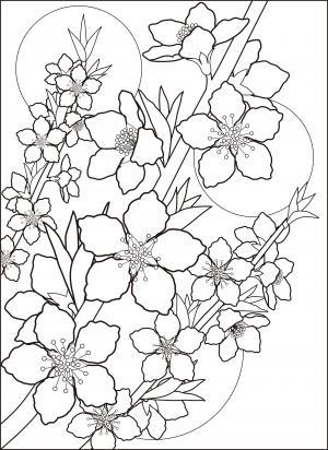 特集読みもの 塗り絵素材で和紙をちぎって貼り絵をしてみましょうの